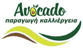 Avocado-Crete
